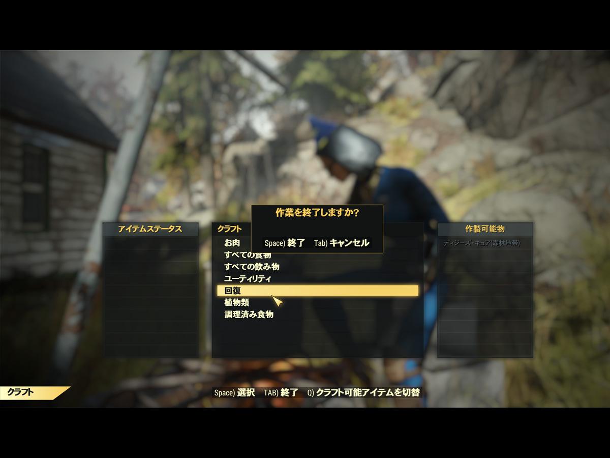 Fo76プレイ記-0028
