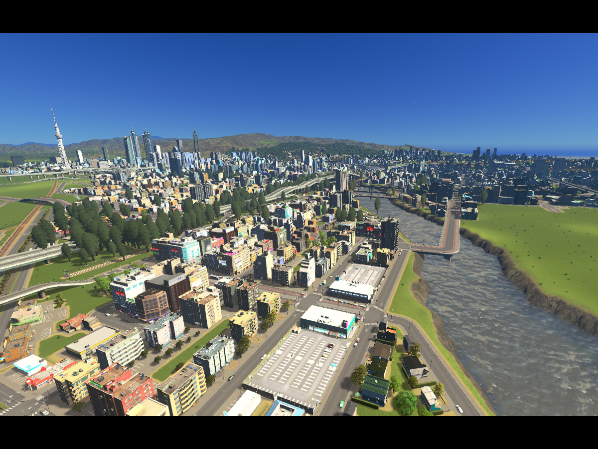 Cities_Skylines-1005
