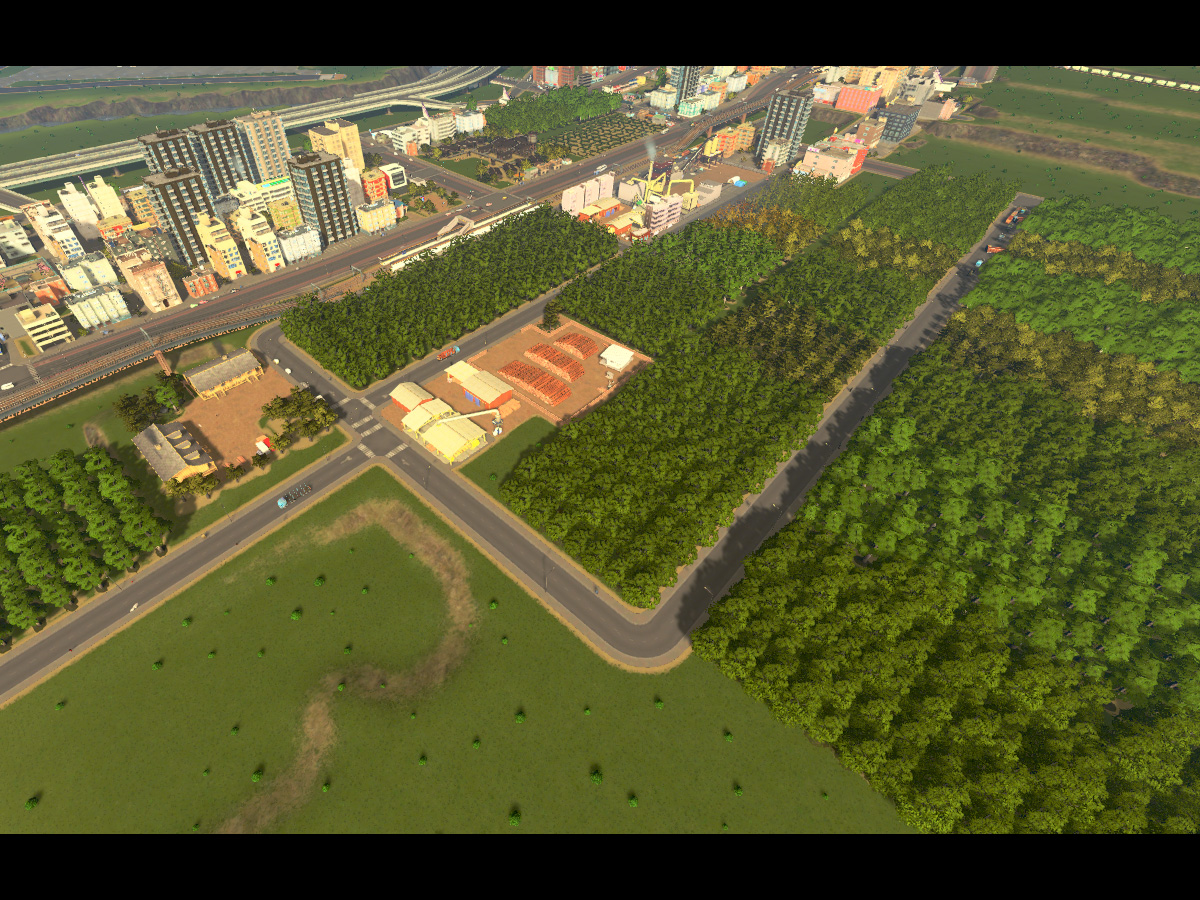 Cities_Skylines-1053