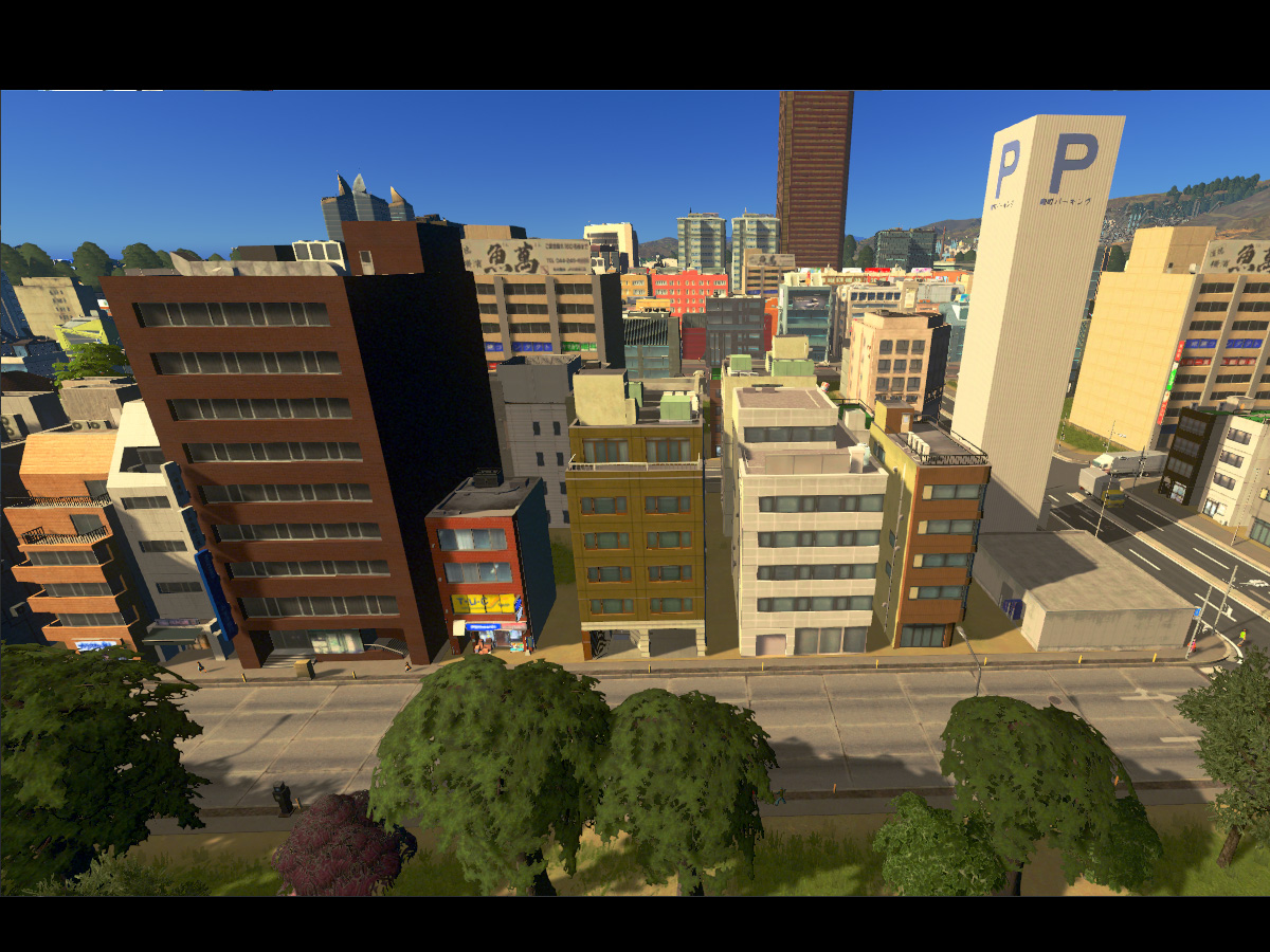 Cities_Skylines-1454