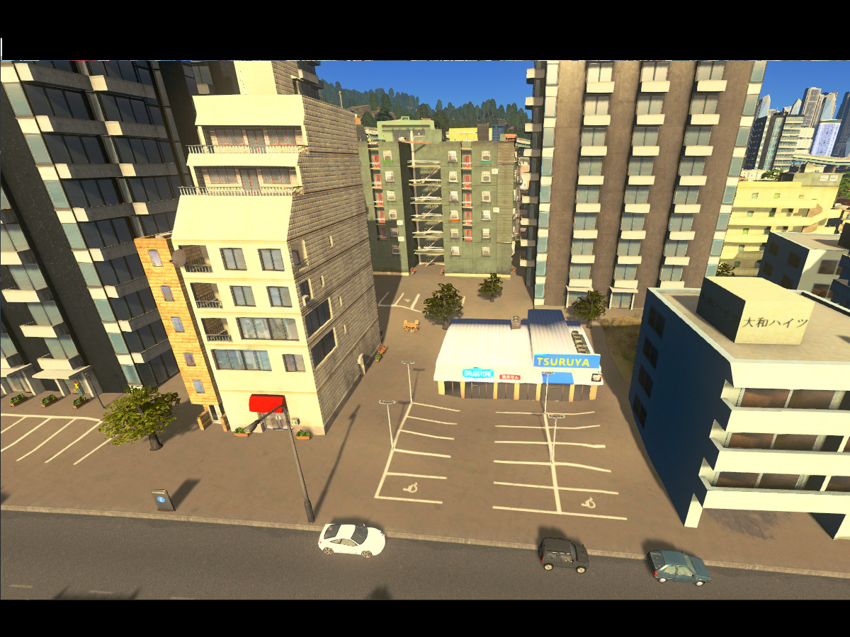 Cities_Skylines-1456