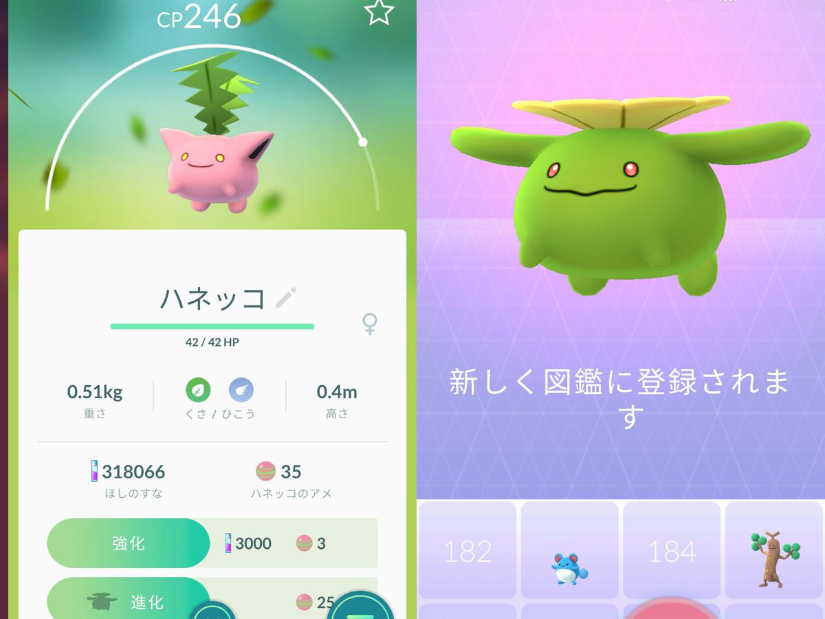 PokemonGOプレイ記-0138